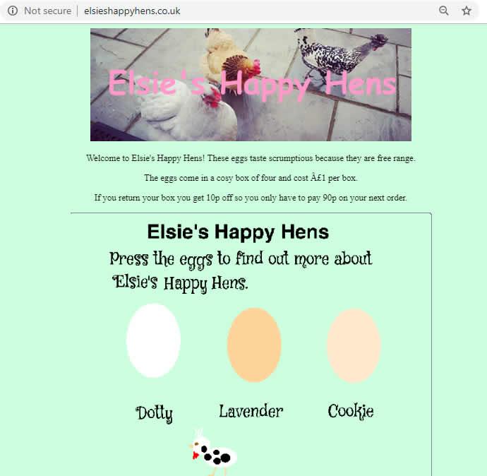 Elsie's Happy Hens